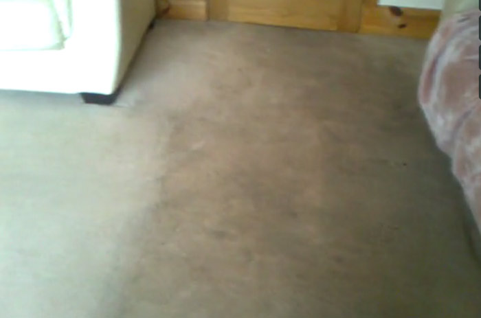 Steam Carpet Cleaning  Mullion